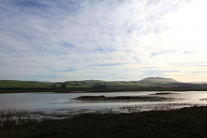 tomales-bay-lodging-seven