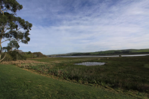 tomales-bay-lodging-eight