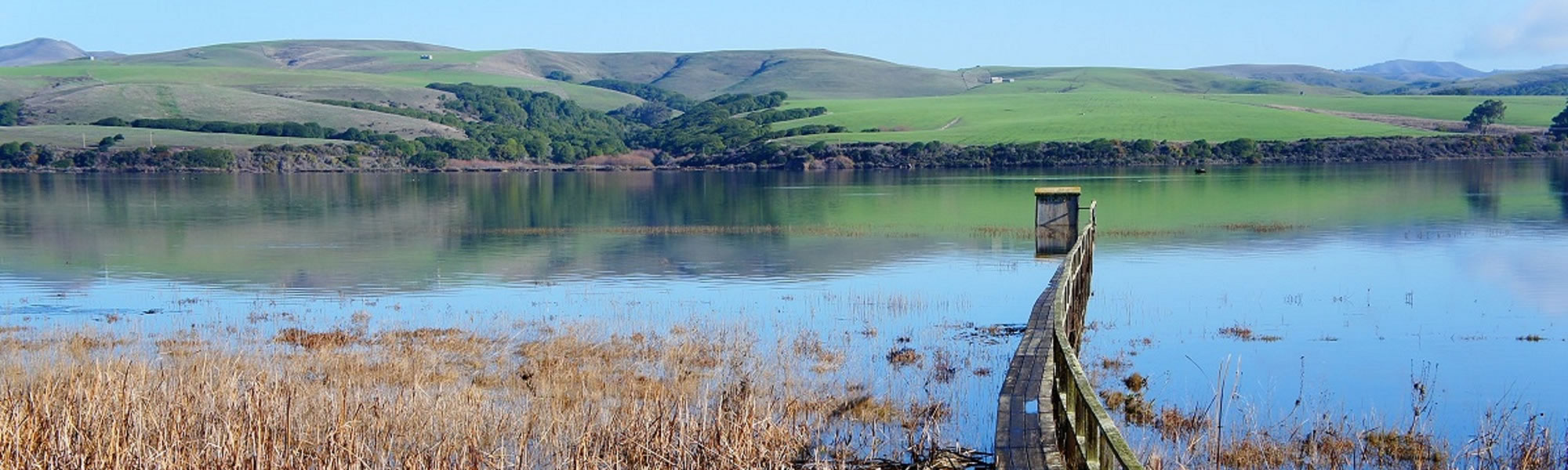 motel invereness on tomales bay