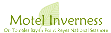 Motel Inverness Logo